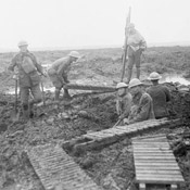 Canadian pioneers laying trench mats over mud, Battle of Passchendaele