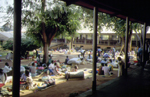 Photograph of patients and their families at St. Mary�s Lacor Hospital, Gulu, northern Uganda