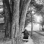 Photograph, entitled ABENAKIS VILLAGE, of an Aboriginal woman standing near an enormous clump of trees beside a road, with a church in the background, Pierreville, Quebec, 1917
